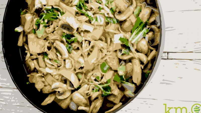 ... seitan stroganoff vegans and carnivores unite seitan tacos seitan kale