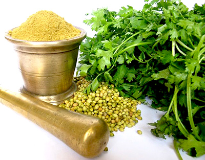 que el alimento sea tu medicina: El cilantro