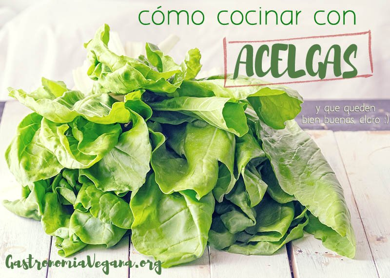 Cómo cocinar con acelgas vía Gastronomía Vegana