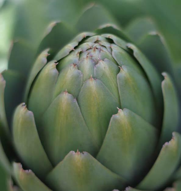 Recetas veganas con alcachofas